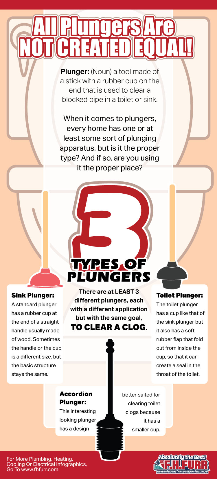 Toilet Punger Infographic