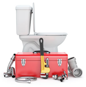 clogged toilet repair leesburg virginia