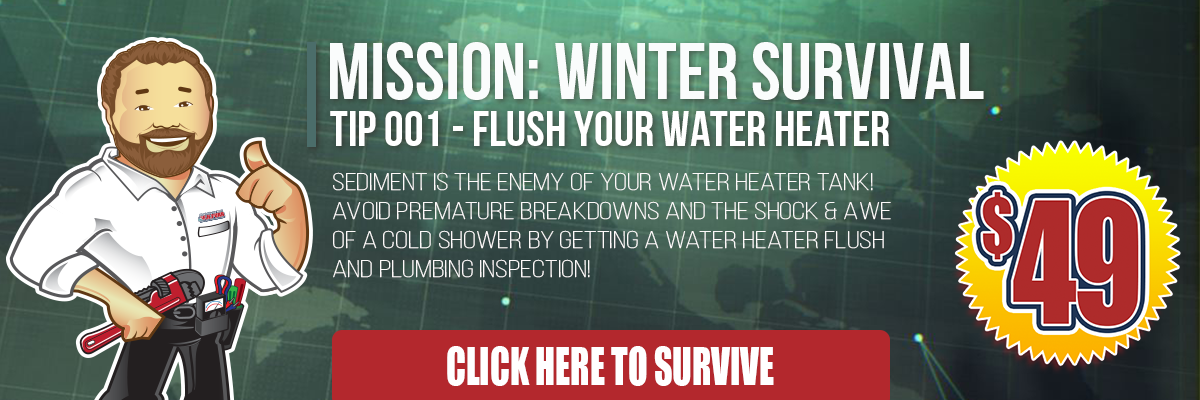 winter-survival-plumbing -website-header